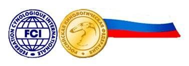 http://images.vfl.ru/ii/1390847712/433e08de/4090579_m.jpg
