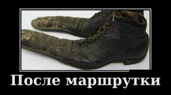 http://images.vfl.ru/ii/1391270951/f6788666/4130547.jpg