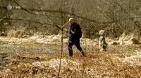 Себастьян Бергман - 1 сезон / Sebastian Bergman (2010) HDTVRip
