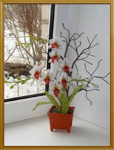 http://images.vfl.ru/ii/1392365698/22c0fbaf/4243078_m.jpg