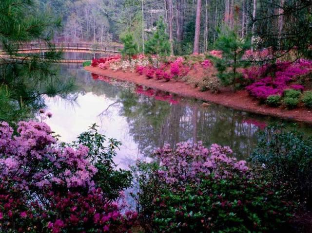 Ландшафтный дизайн... Сделаем свой сад самым красивым! - Страница 6 4435817_m