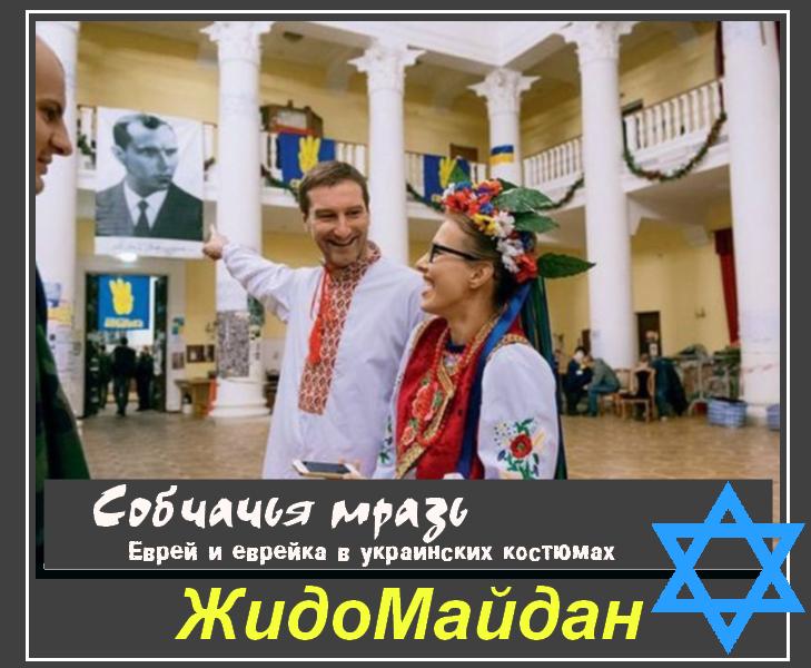 http://images.vfl.ru/ii/1394921421/e88ffb7f/4512657.png