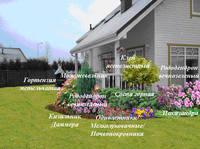 Участок с ноля для нулевого садовода-огородника - Страница 11 4537660_s