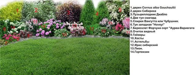 Участок с ноля для нулевого садовода-огородника - Страница 11 4538310_m
