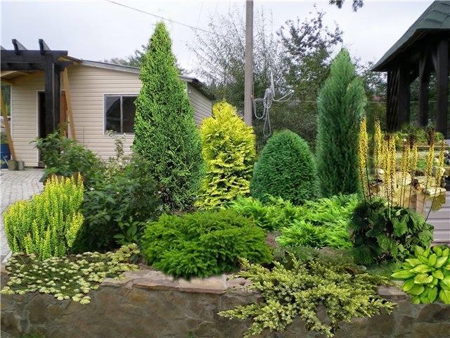 Участок с ноля для нулевого садовода-огородника - Страница 11 4539059_m