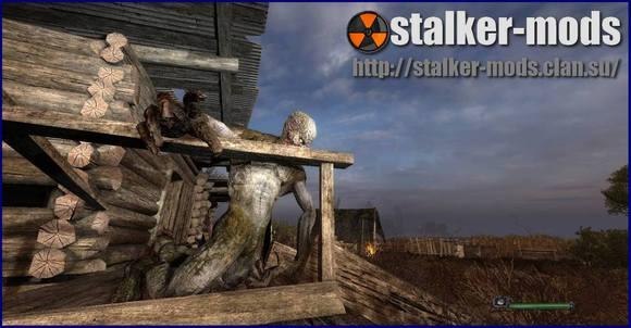 stalker 9