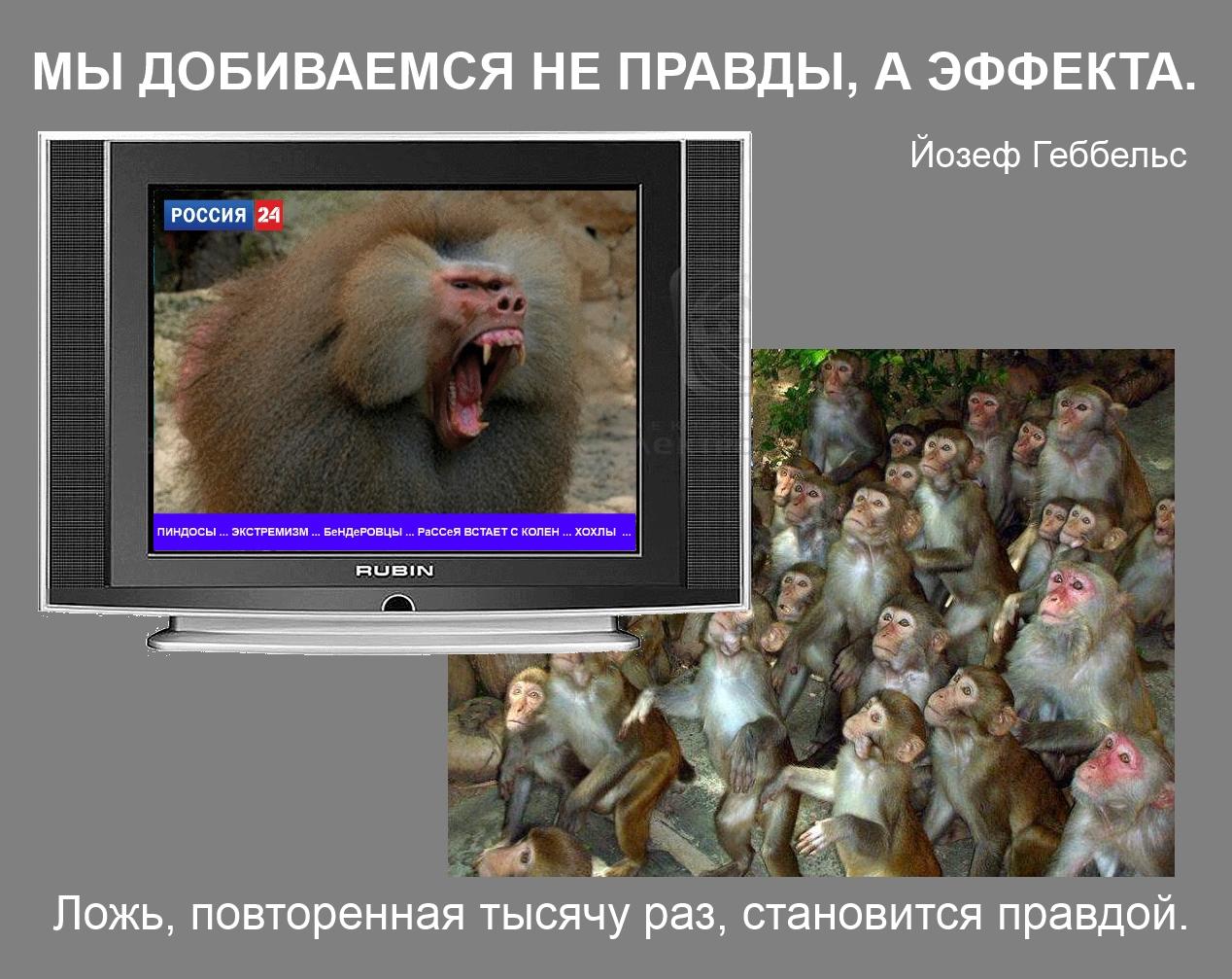 Россия нас трижды обманула, - крымскотатарская правозащитница Сейтмуратова - Цензор.НЕТ 3072