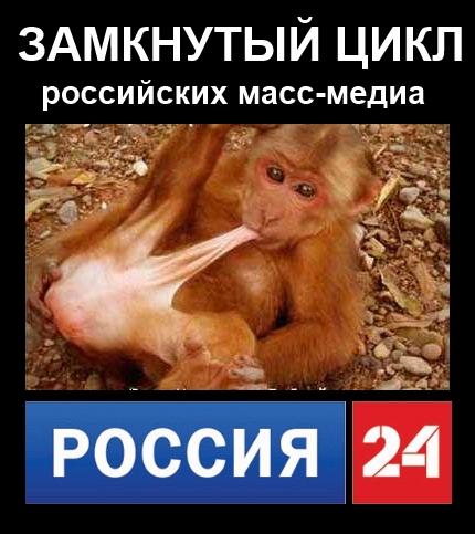 """Многие """"регионалы"""" передумали поддерживать Добкина на выборах и отзывают голоса, - источник - Цензор.НЕТ 3913"""