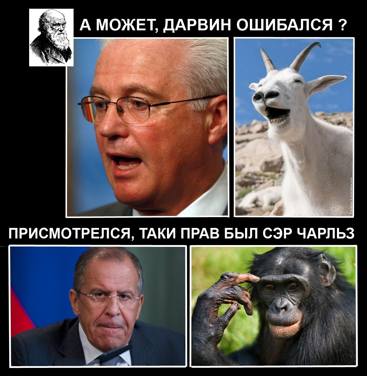 Идею Украины о создании группировки НАТО в Черном море мы считаем провокационной, - Лавров - Цензор.НЕТ 3802