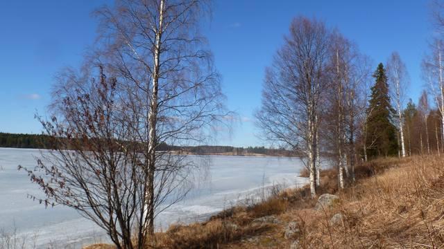 Зимний детский отдых - Страница 3 4664580_m