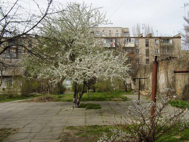 http://images.vfl.ru/ii/1396700932/5b7f0e55/4726823_m.jpg