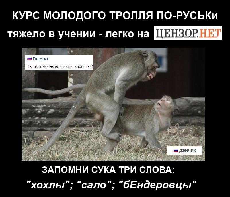 Предварительной причиной пожара в Чернобыльской зоне ГосЧС называет поджог - Цензор.НЕТ 2085