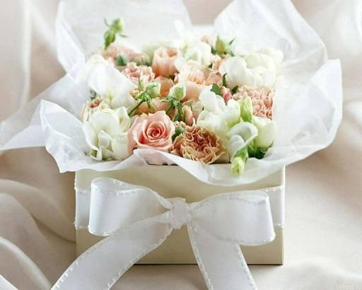 http://images.vfl.ru/ii/1397478406/95f2827f/4831109_m.jpg