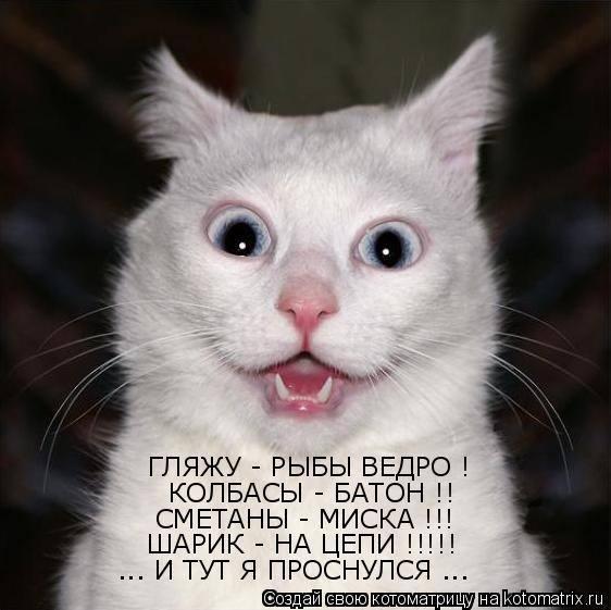 Улыбка (юмор, добрые анекдоты, смешные картинки) 4832149_m