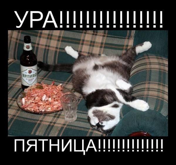 Улыбка (юмор, добрые анекдоты, смешные картинки) 4832297_m