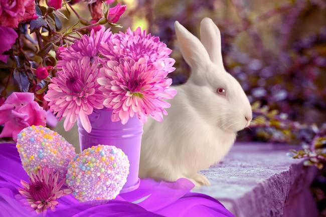 пасхальный кролик1