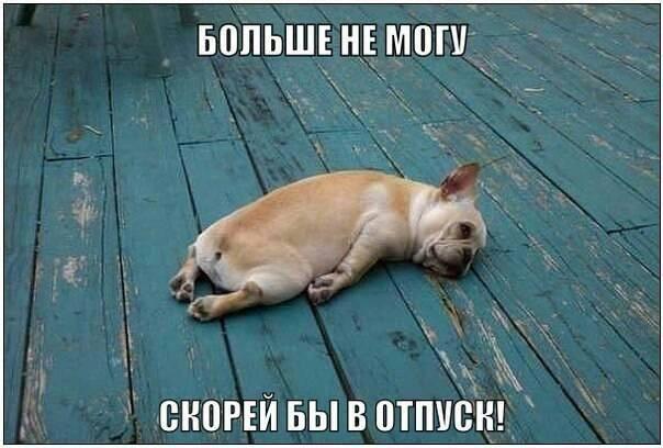 http://images.vfl.ru/ii/1397947486/f5cf168b/4888529_m.jpg