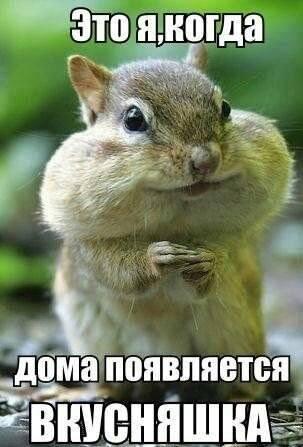 http://images.vfl.ru/ii/1397947526/70250063/4888532_m.jpg