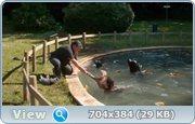 http//images.vfl.ru/ii/1399168015/b4f138a5/50277.jpg