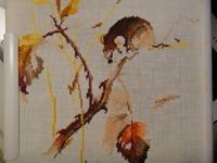 http://images.vfl.ru/ii/1400946040/ce8d1a36/5226686_s.jpg