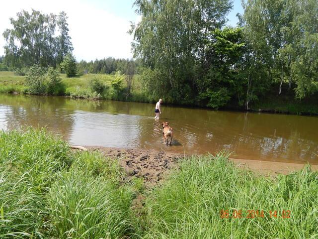 http://images.vfl.ru/ii/1402147866/e5af8be7/5363756_m.jpg