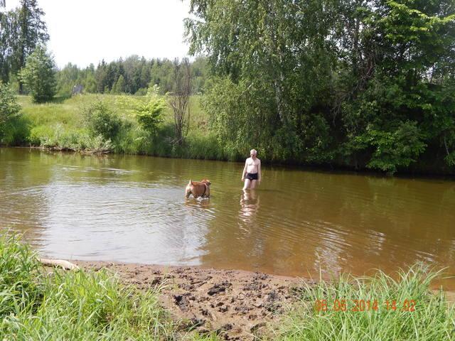 http://images.vfl.ru/ii/1402147867/782489b2/5363758_m.jpg