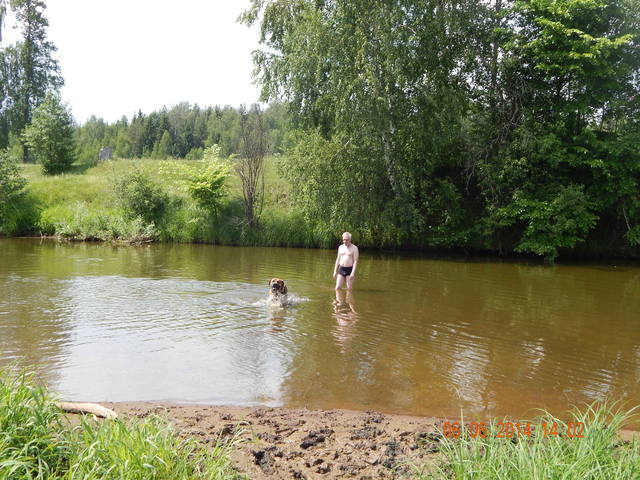 http://images.vfl.ru/ii/1402147868/0039f479/5363759_m.jpg