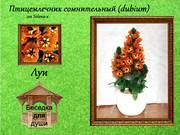 http://images.vfl.ru/ii/1402373707/f802c25f/5388958_s.jpg