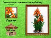 http://images.vfl.ru/ii/1402373799/76b5e4c5/5388968_s.jpg