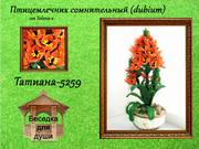 http://images.vfl.ru/ii/1402373826/3e3c1dd4/5388974_s.jpg