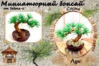 http://images.vfl.ru/ii/1402763238/2f74a6c8/5427501_s.jpg