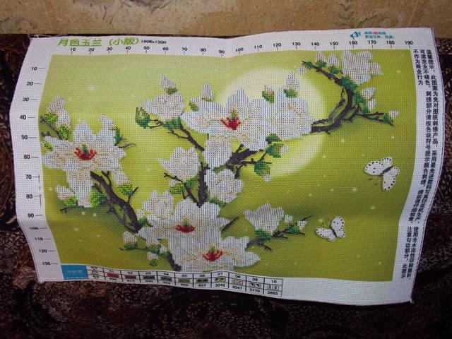 http://images.vfl.ru/ii/1402841301/8cc6f89d/5434931_m.jpg