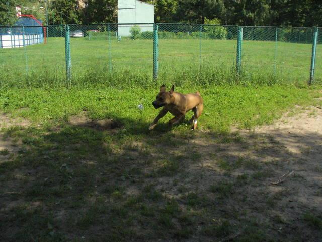 http://images.vfl.ru/ii/1403418953/fb7653be/5497435_m.jpg
