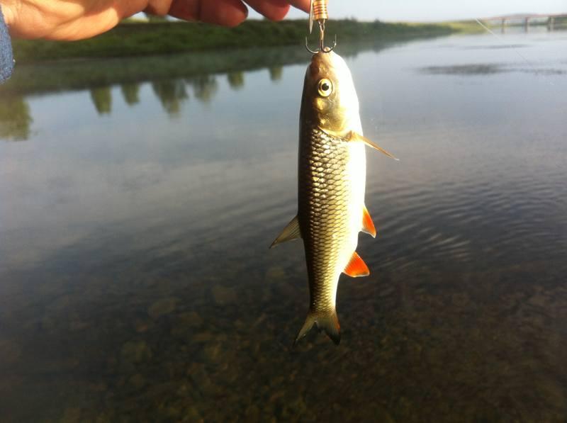 город юрюзань рыбалка