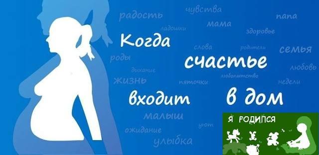 Я беременна v5.2 / Я родился v3.2.8 (2014/RUS/ENG/Android)