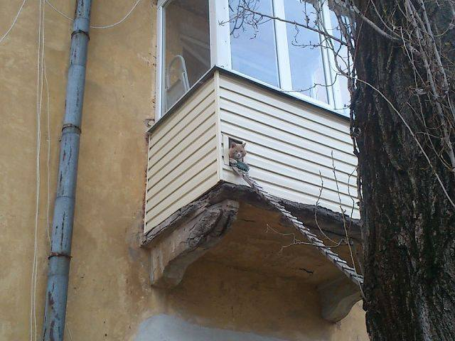 http://images.vfl.ru/ii/1404593050/b1d5cc3e/5631625_m.jpg
