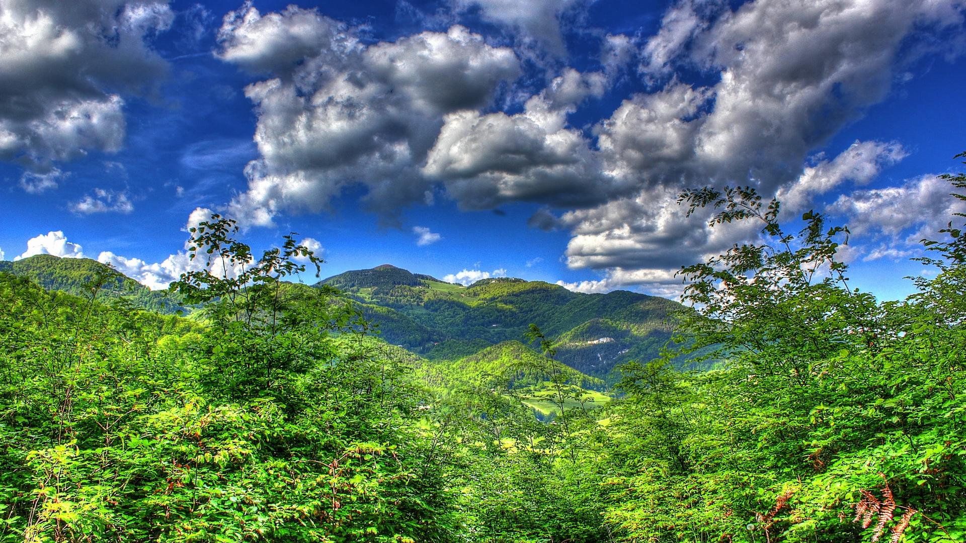 http://images.vfl.ru/ii/1404766597/30bba5d0/5648121.jpg