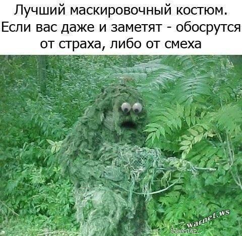 http://images.vfl.ru/ii/1404832816/b37c9c6f/5653860_m.jpg