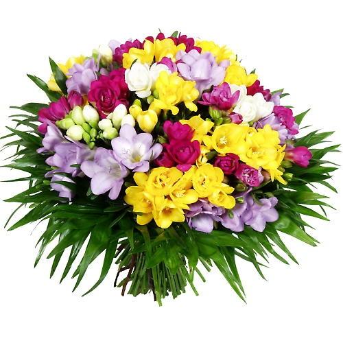 http://images.vfl.ru/ii/1404875736/493d3bec/5657619.jpg