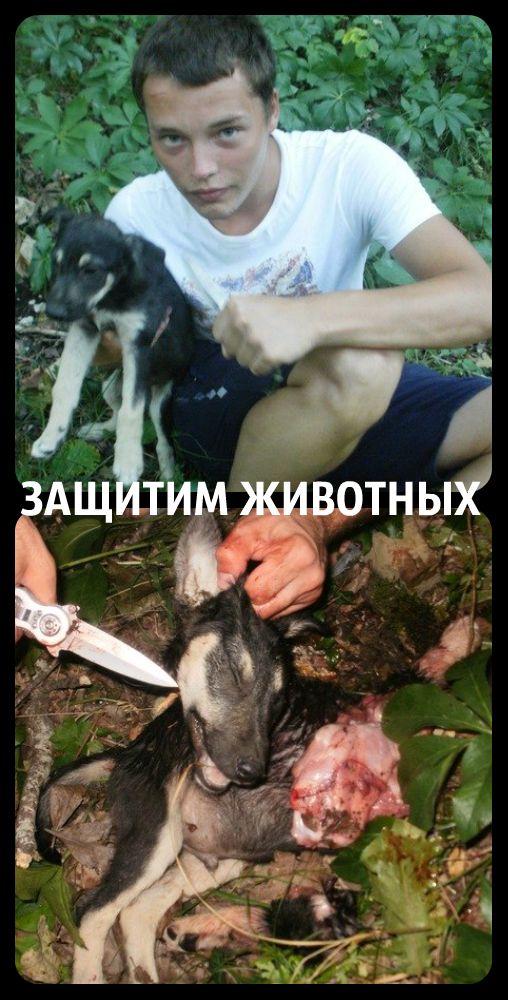 http://images.vfl.ru/ii/1405570497/cce19738/5729533.jpg