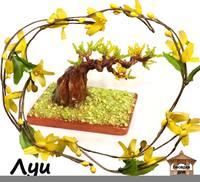 http://images.vfl.ru/ii/1405974070/c3f89e49/5770568_s.jpg