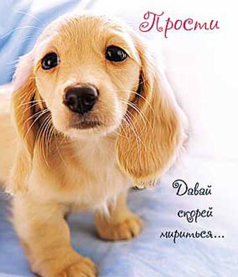 images.vfl.ru/ii/1406188774/7d3dae47/5789078_m.jpg
