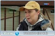 Недотрога (2014) HDTVRip + SATRip