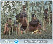 http//images.vfl.ru/ii/1408403453/cef7336f/6046009.jpg