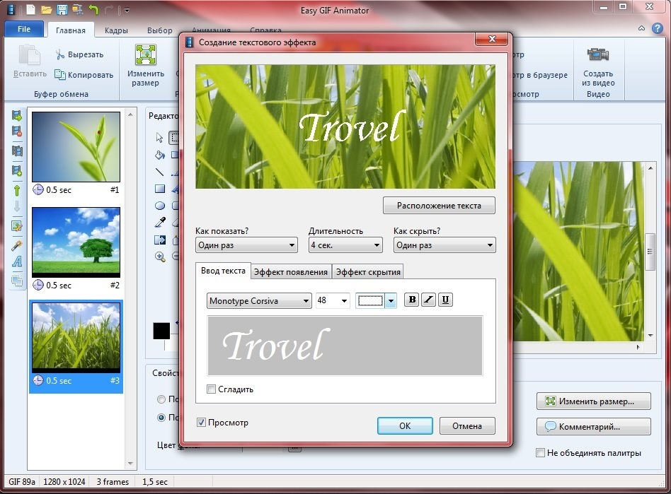 Easy GIF Animator 6.1 [RePack] [Shareware]