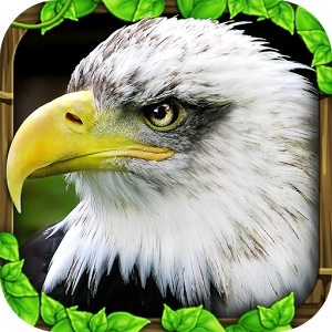 Eagle Simulator v1.0 (2014/ENG/Android)