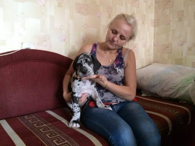 http://images.vfl.ru/ii/1408957014/c5574052/6113360_m.jpg