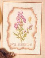 http://images.vfl.ru/ii/1408992827/d0299140/6121212_s.jpg