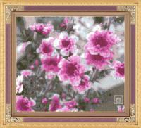 http://images.vfl.ru/ii/1408995679/e861bb16/6121981_s.jpg