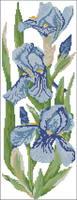 http://images.vfl.ru/ii/1409070460/731316e6/6132516_s.jpg